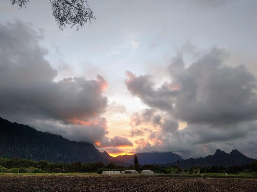 sunset 9-2.jpg