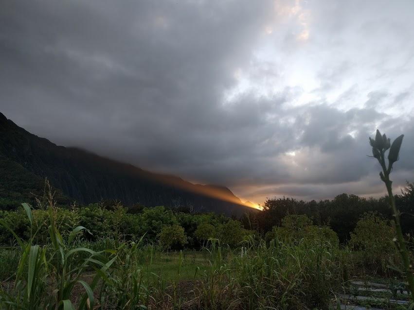 sunset beam.jpg