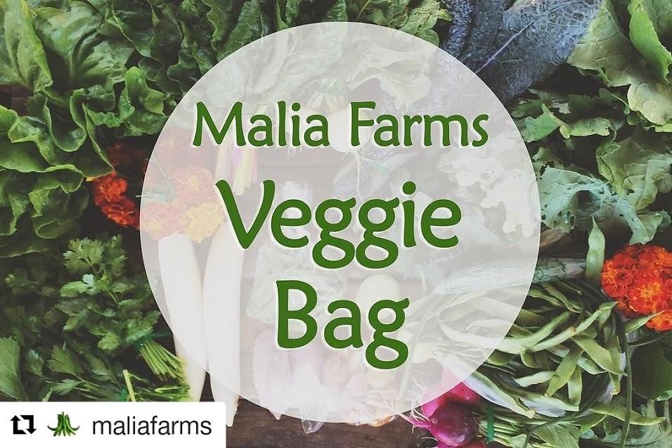 malia farms veggie bag.jpg