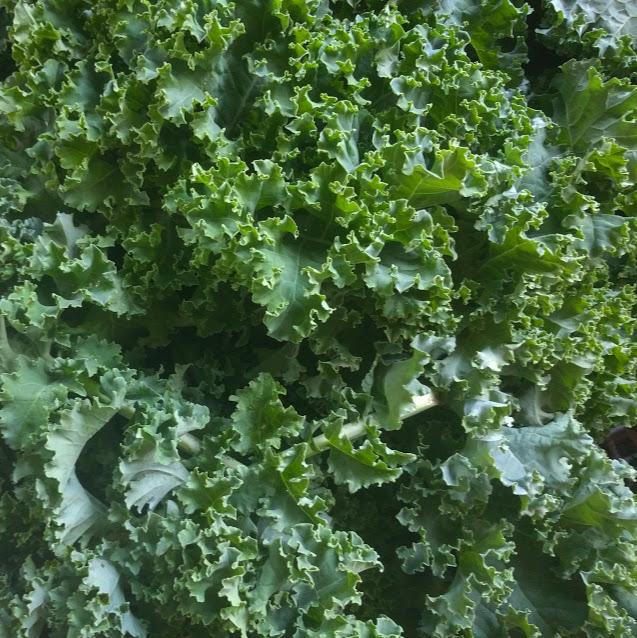 kale close up.jpg