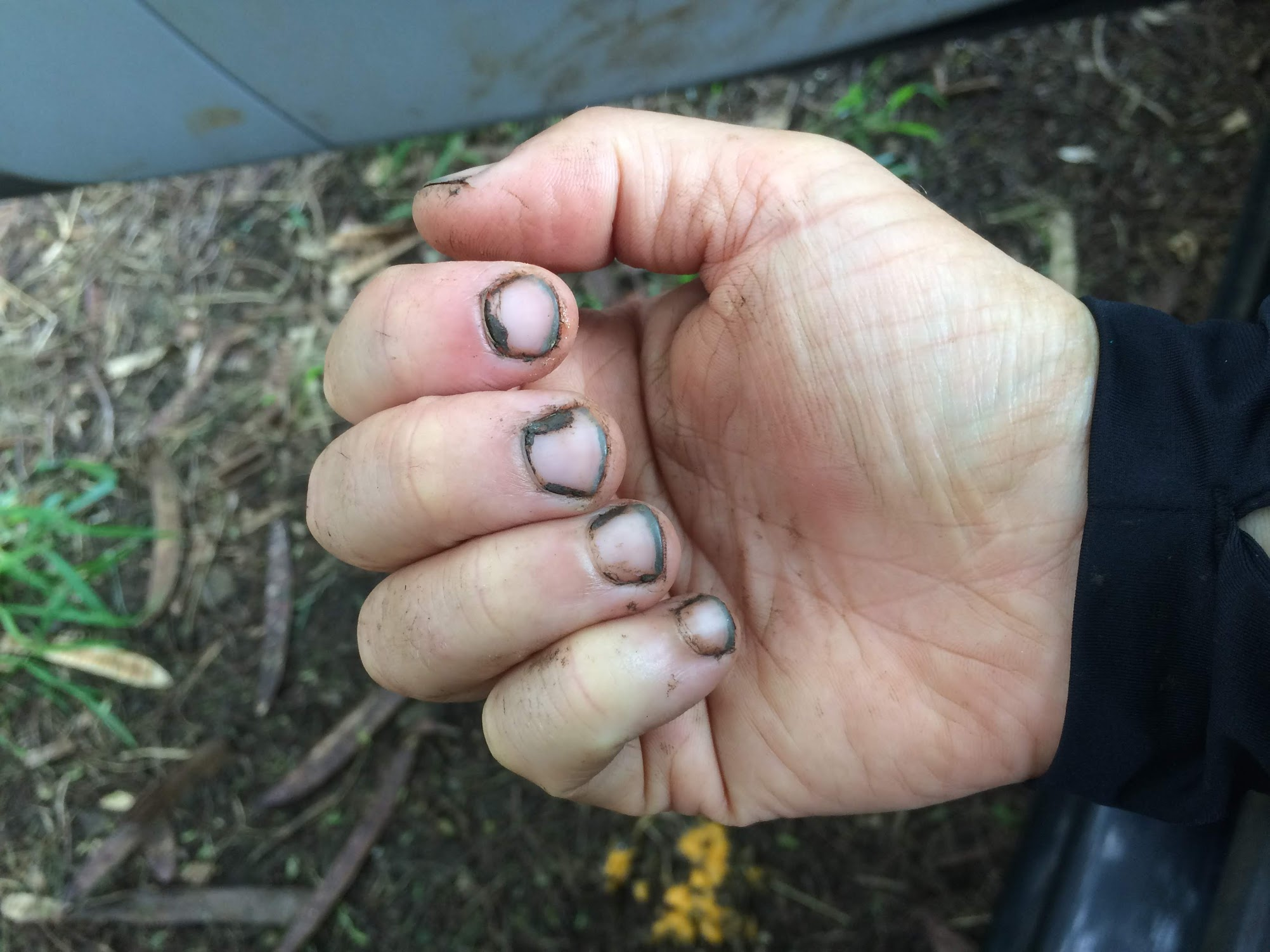 dirtfingernails.jpg