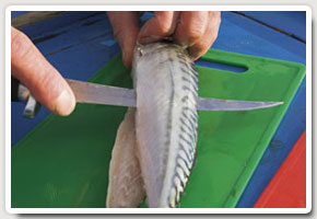 3. Remove knife and turn over the mackerel. Repeat step 1 on the uncut side, cutting towards the tail to avoid your fingers holding the head of the bai