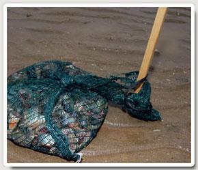 The sea will gradually cover the bag