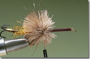 surface-lure-pic-9.jpg