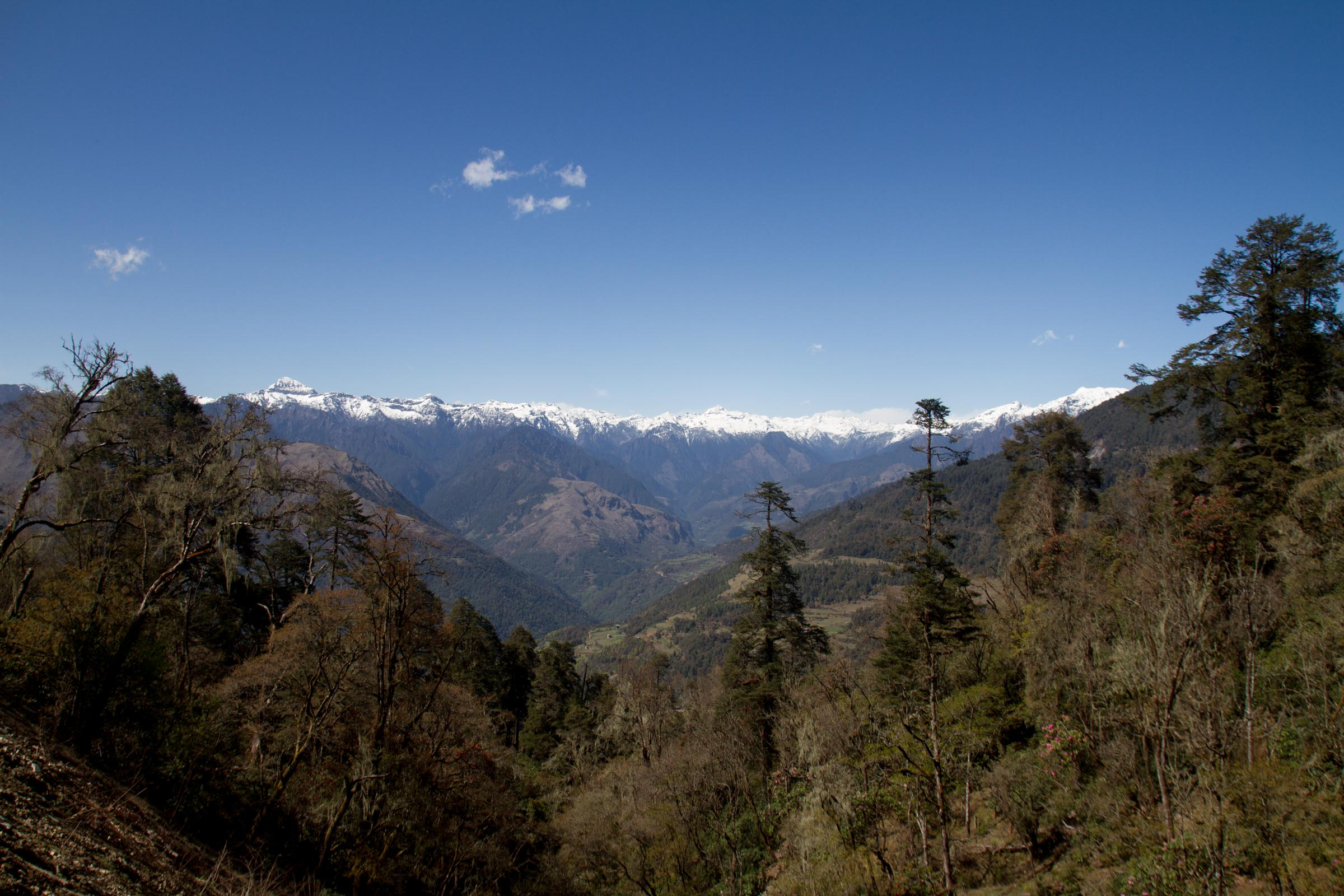 View from Pele La