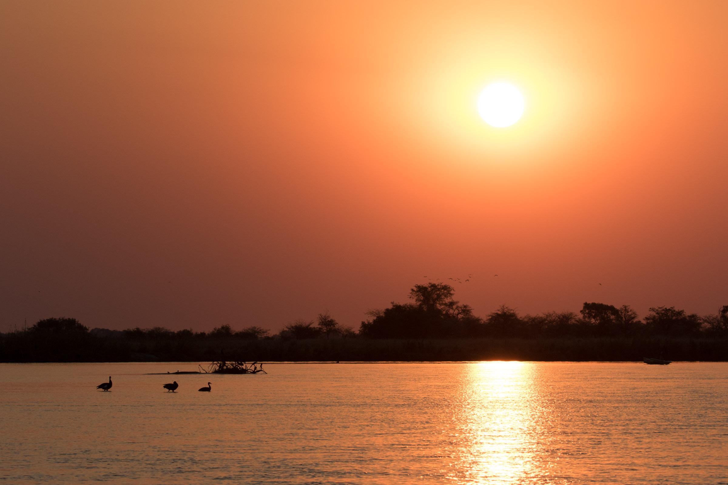 Sunset over the Okavango River