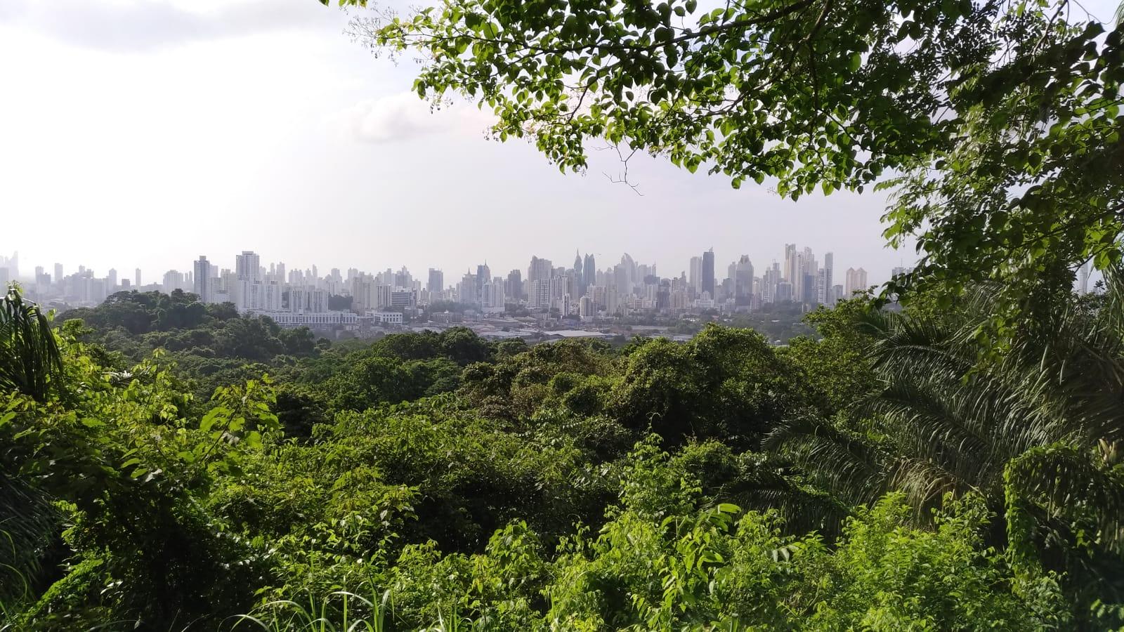 Panama City view