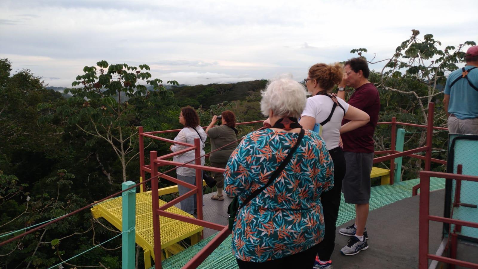 Birding the Canopy Tower