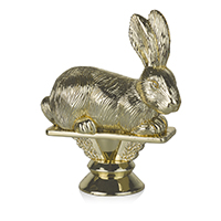 Animal- Rabbit