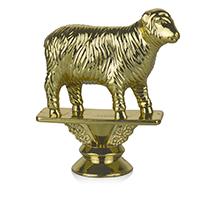 Animal- Sheep