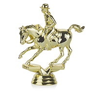 Equestrian- Cutting Female
