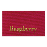 Ribbon Color_Rasberry.jpg