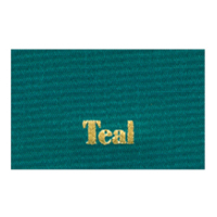 Ribbon Color_Teal.jpg