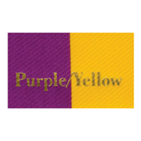 Ribbon Color_Purple_Yellow.jpg
