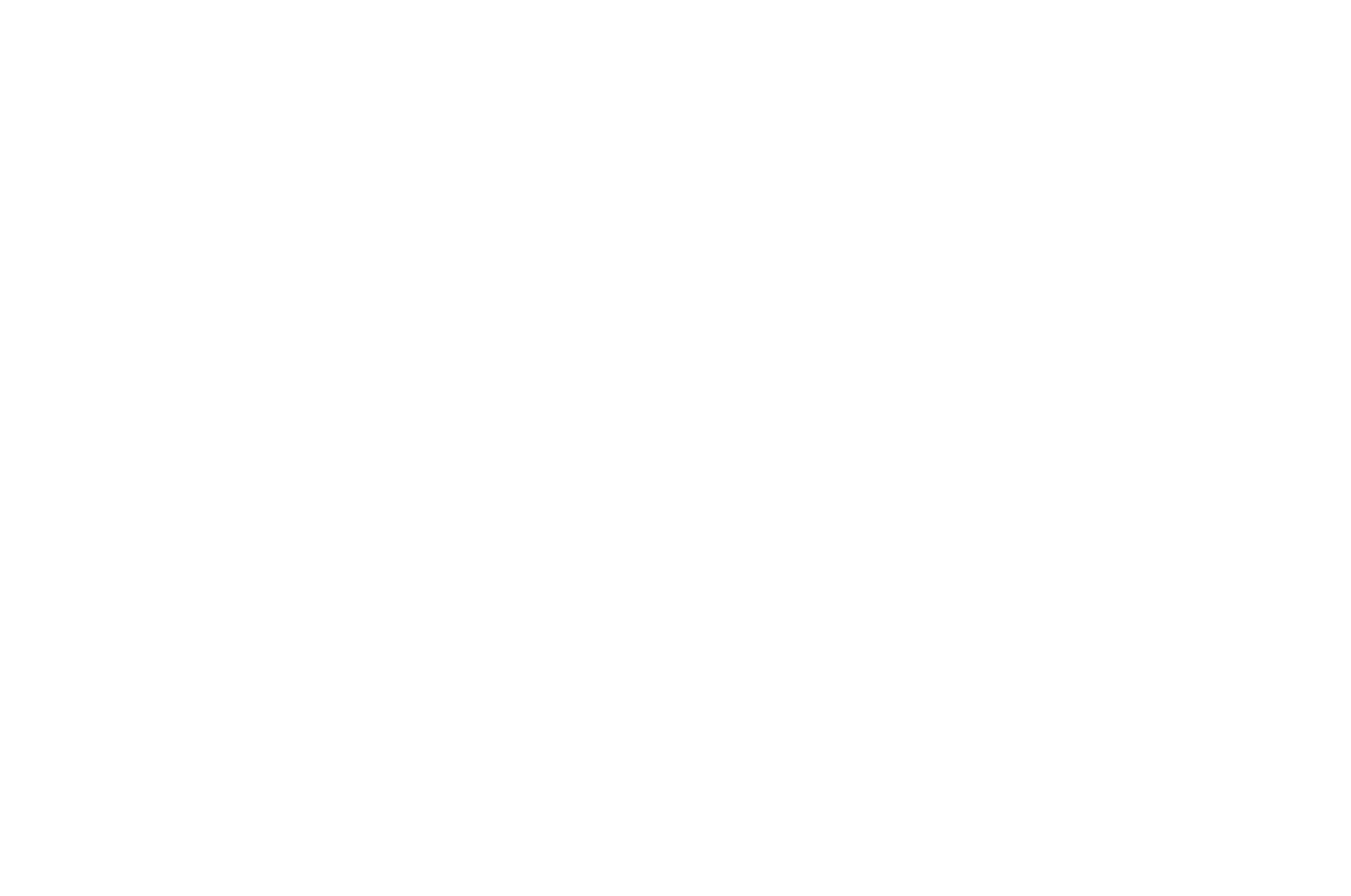 BEST DIRECTOR - Great Lakes Christian Film Festival GLCFF - 2017.png