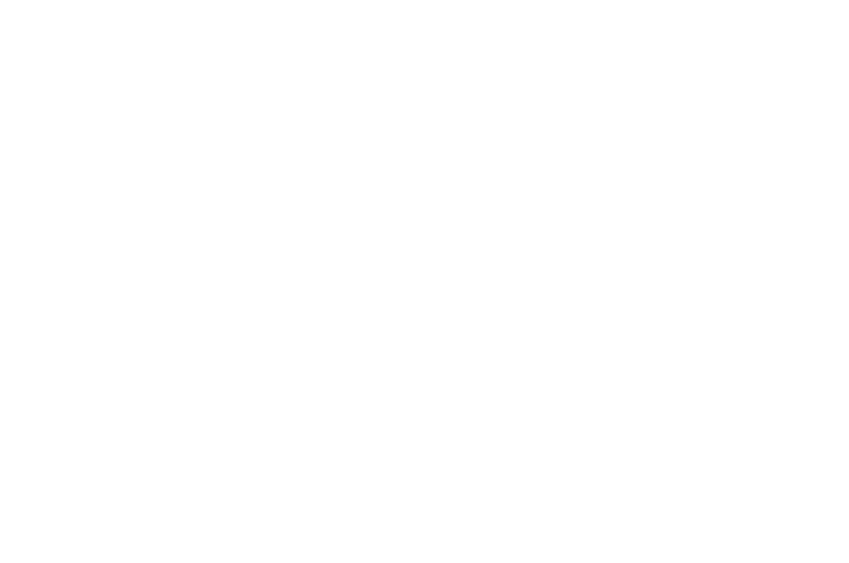 AUDIENCE CHOICE AWARD - International Christian Film Festival - 2017.png