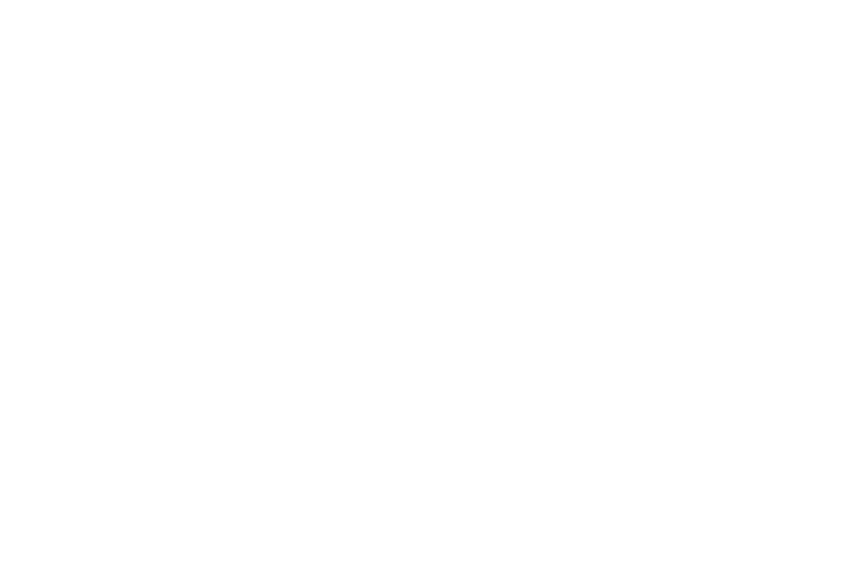 BEST DIRECTOR - Christian Film Festival - 2017.png