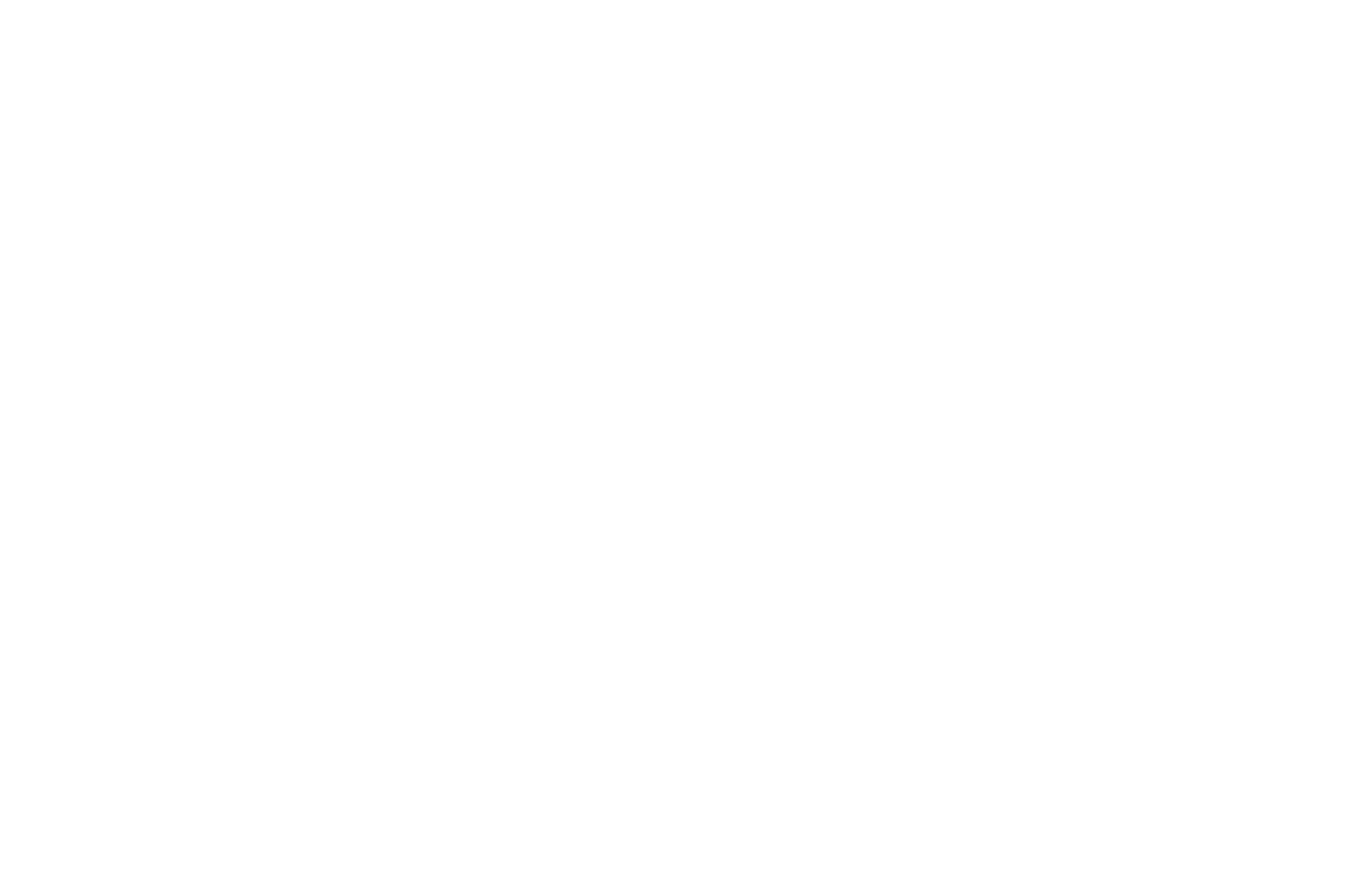 AWARD OF MERRIT - Christian Life International Film Festival - 2017 (1).png