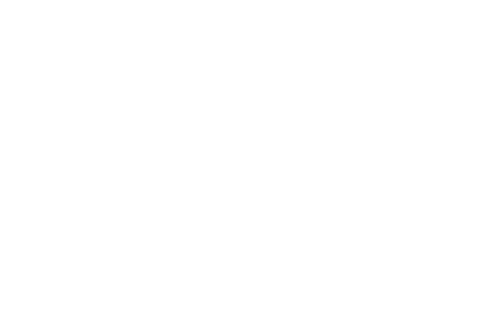FINALIST BEST DOCUMENTARY - CHRISTIAN WORLDVIEW FILM FESTIVAL - 2017.png
