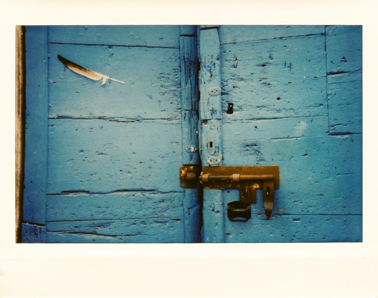 Door Detail ... Rovinj, Croatia. Take care to avoid unwanted elements along the edge of your frames due to parallax shift, especially when shooting closeup. Thinking this scan is a bit too warm - the actual print is less so.