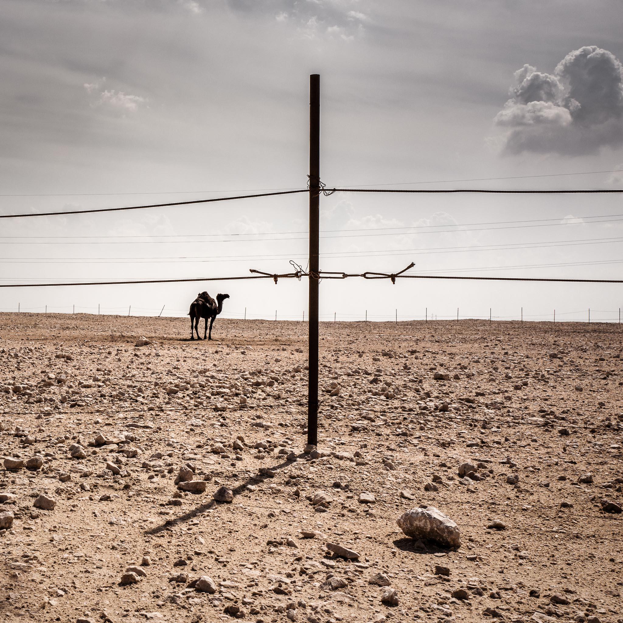 Qatar-45.jpg