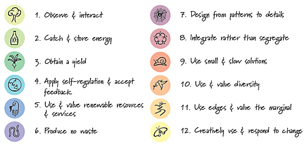The 12 Holmgren principles are one available set of design principles used in permaculture design.