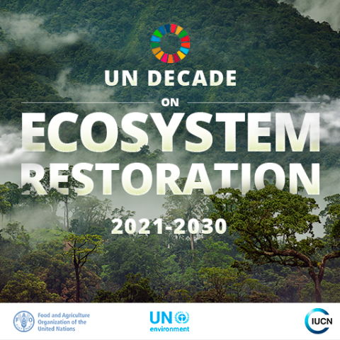 ecosystem-restoration.png