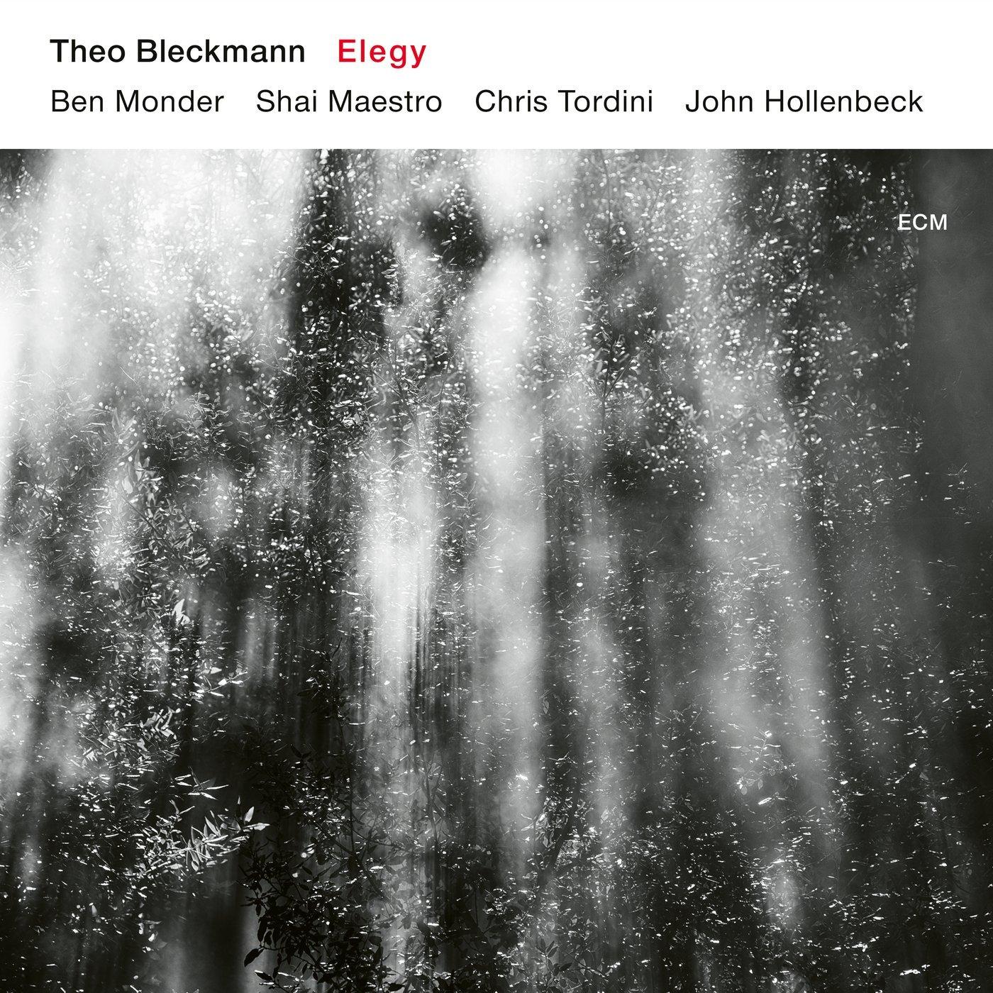 Theo Bleckmann Elegy Cover.jpg