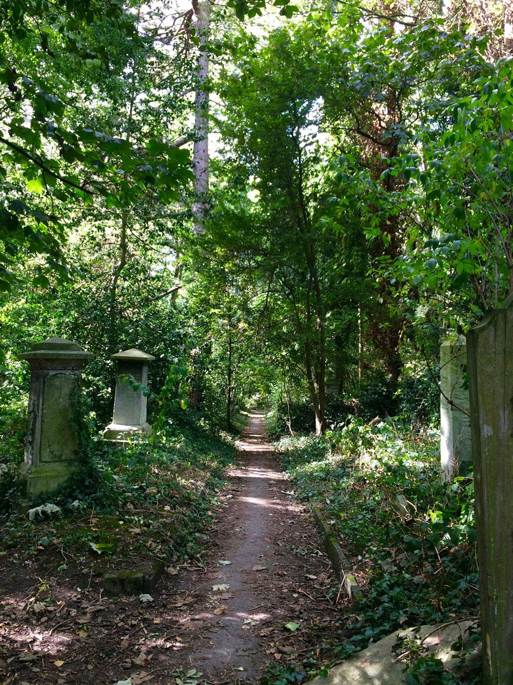 Abney-park-cemetery-walking-exploring-london