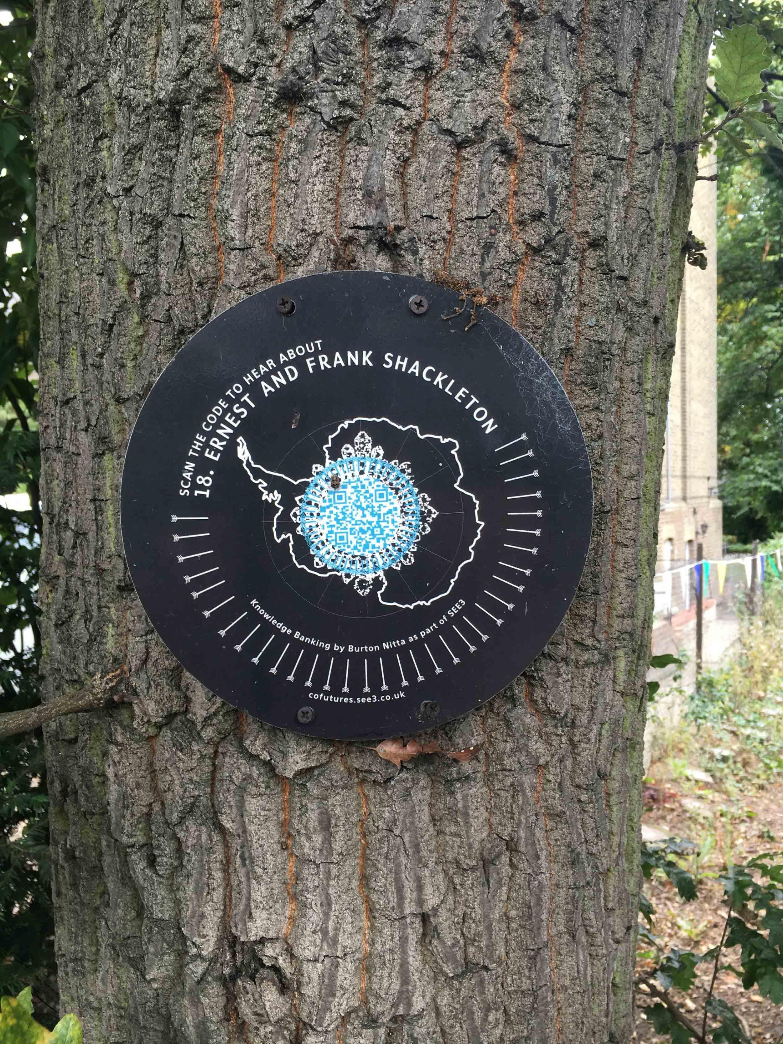 tree-blog-post-jaunt-gojauntly