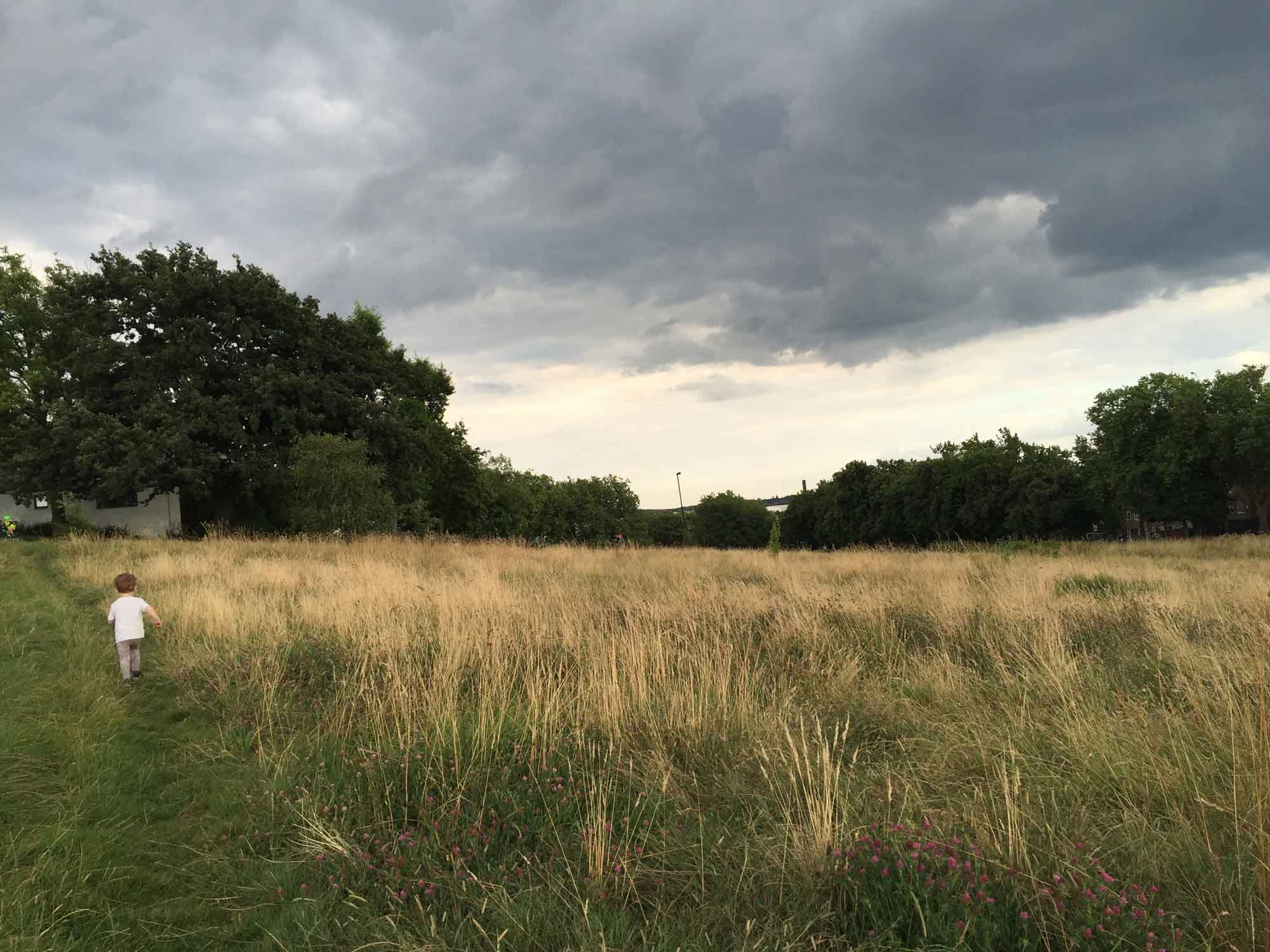 hilly-fields-gojauntly-blog-hana