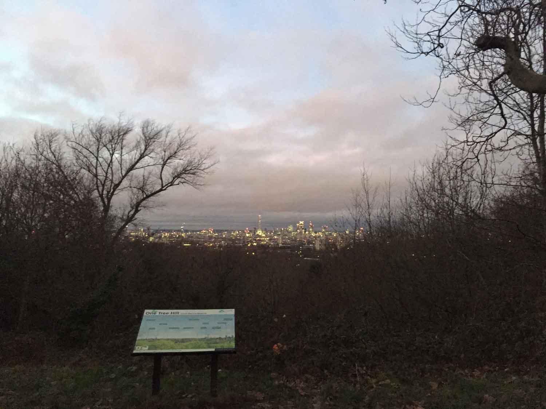 one-tree-hill-view-gojauntly-walk-hana-blog