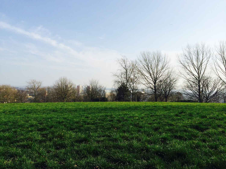 Blythe-hill-picture-gojauntly-walk-nature-hana