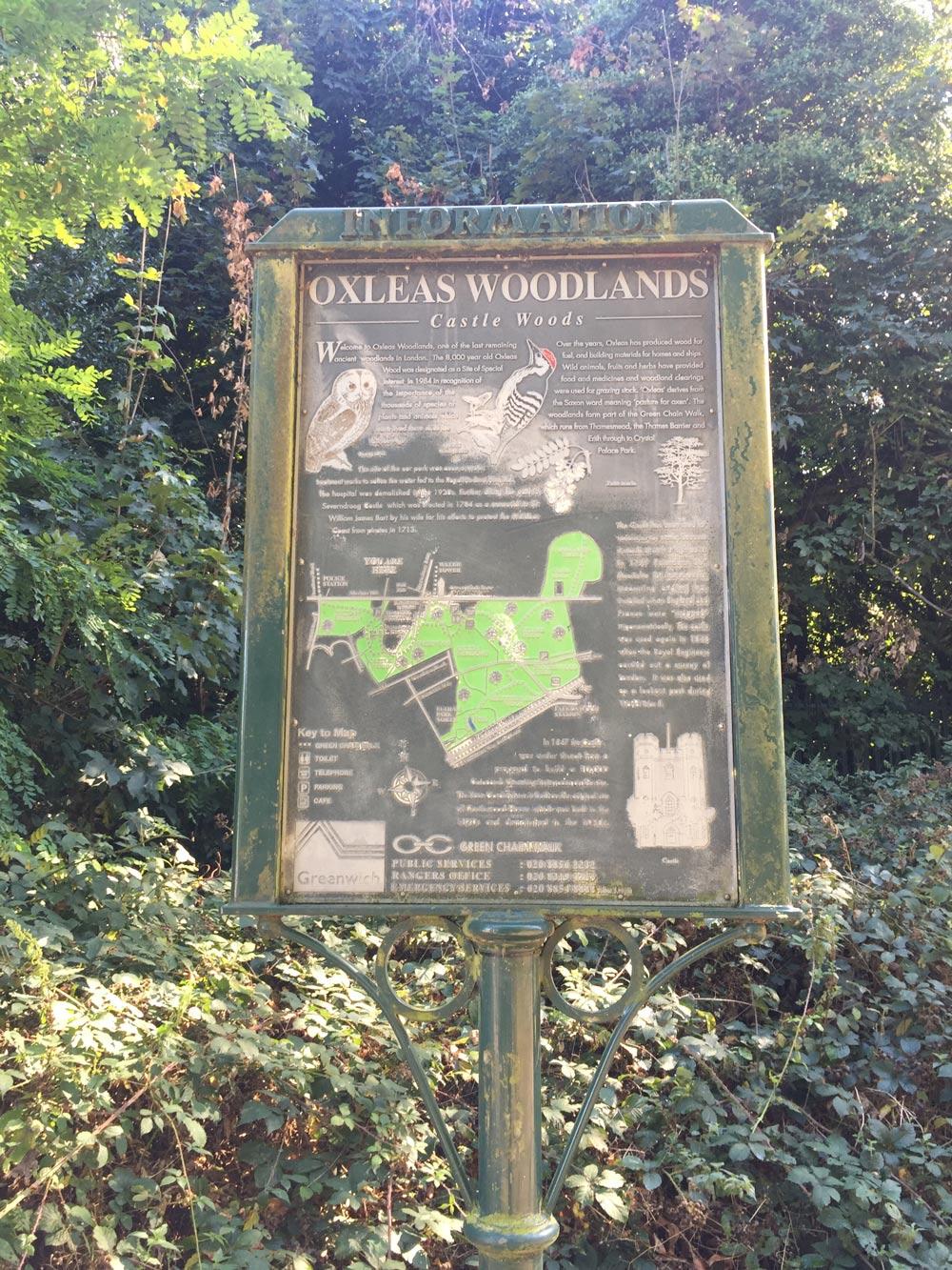 oxleas-woodland-blog-hana-gojauntly-2016
