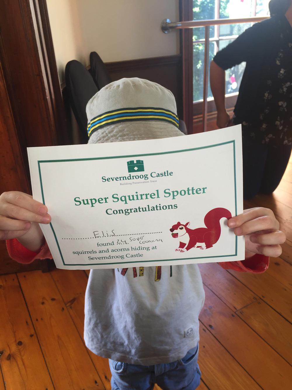 squirrel-certificate-gojauntly-blog-post-hana-2016