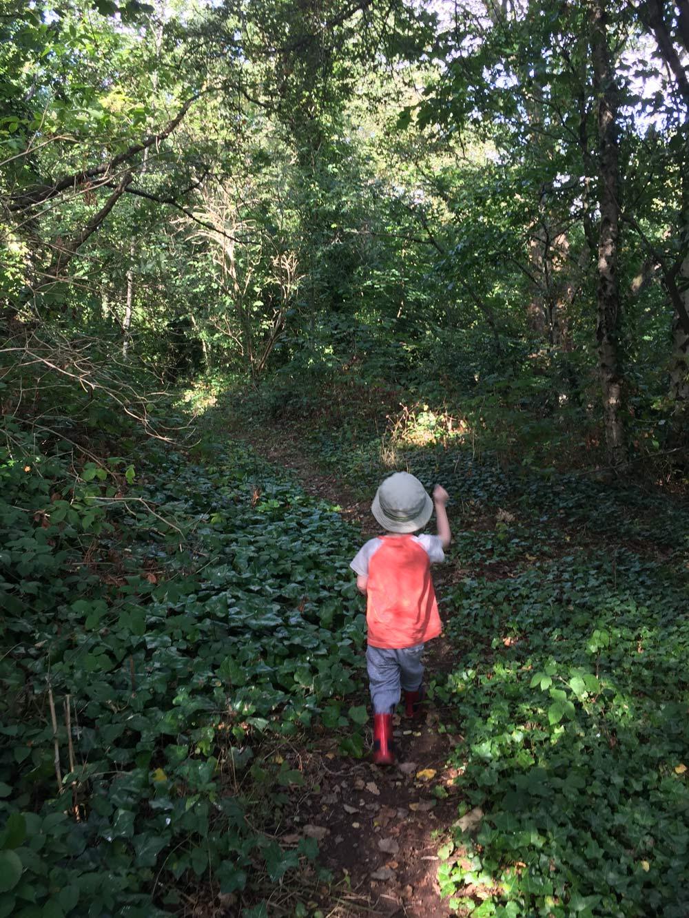 Path-brokley-nature-gojauntly-blog-hana-2016