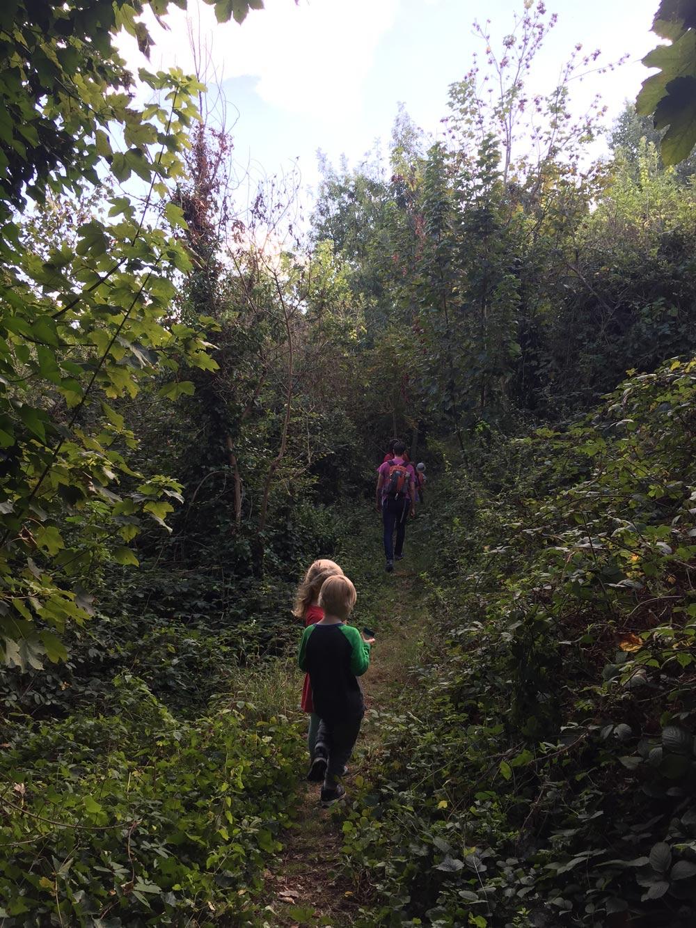 brockley-nature-blog-post-hana-2016