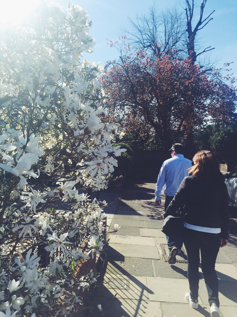 Go-jauntly-richmond-park-walking-london.jpg