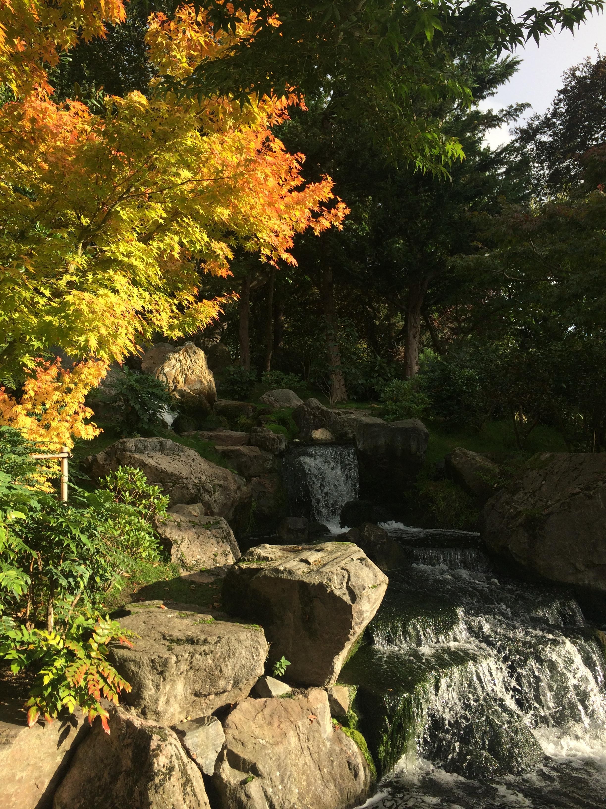 holland-park-kyoto-garden