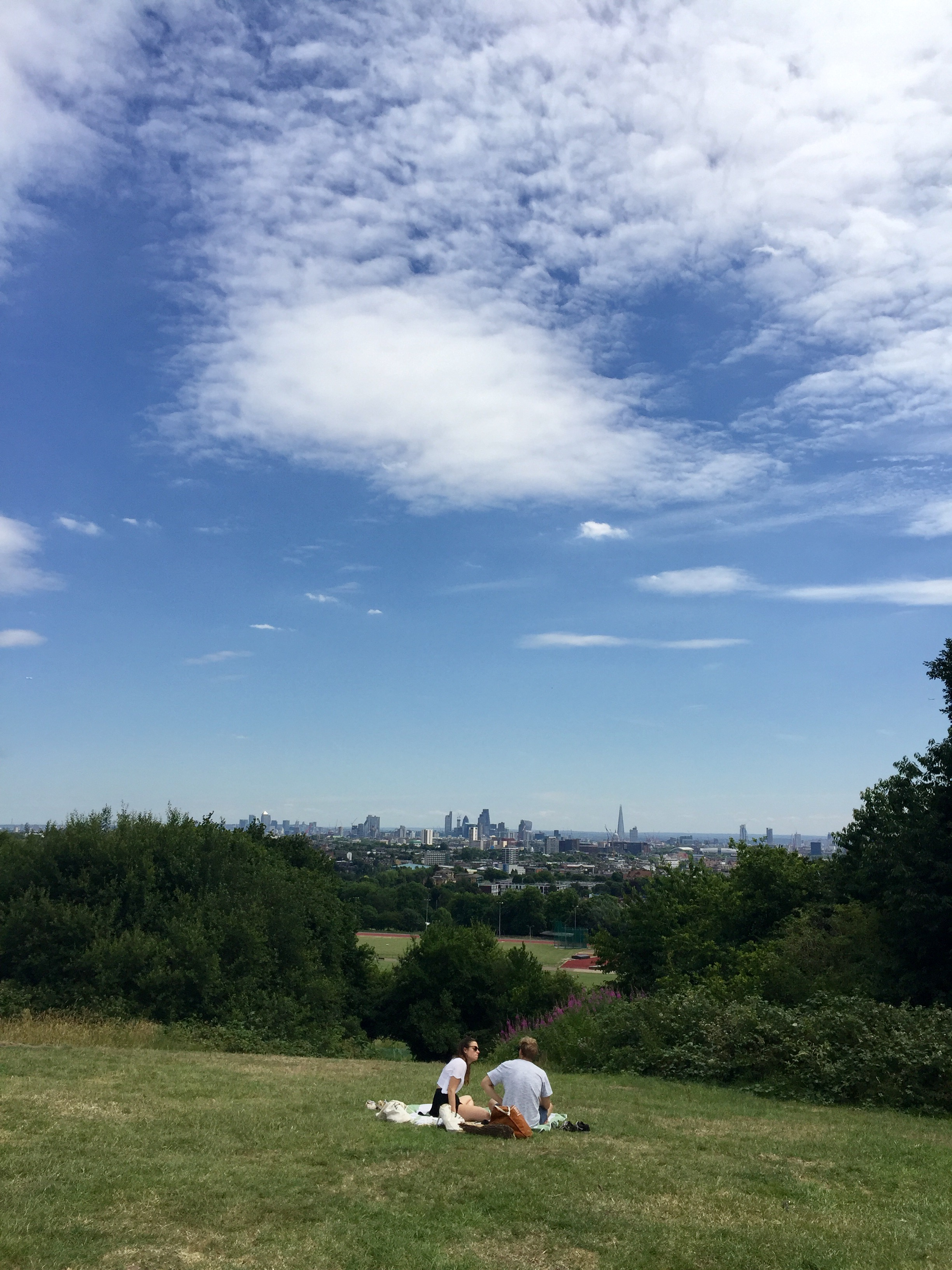 hampstead-heath-great-view