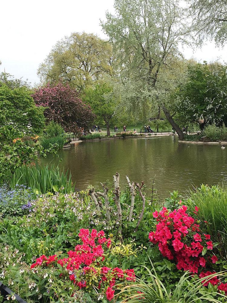 st-james-park-lake-flowers