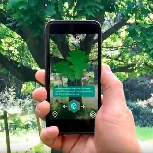 Exploring nature connection and AR
