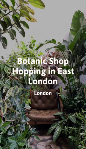 Botanic Shop Hopping in East London.png