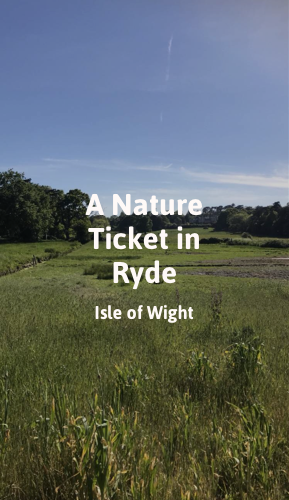 A Nature Ticket in Ryde.png