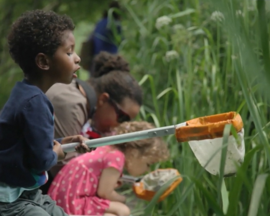 Find an event - From nature walks to wildlife workshops, there's something for everyone.View all events