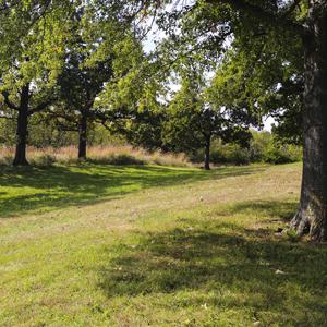 Minor Park, MO Photo Credit: NPS - Matt Poyner