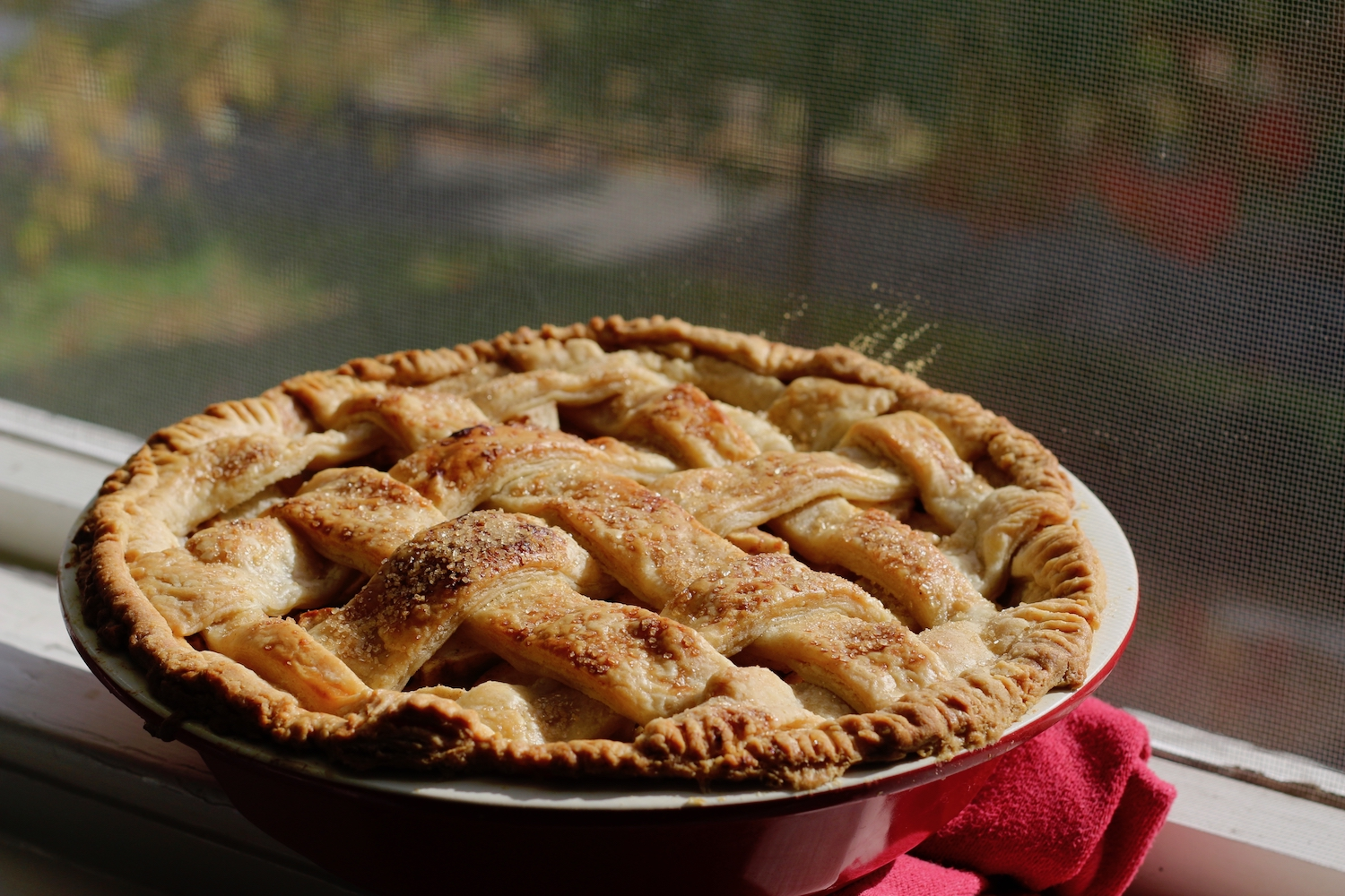 Pear pie-linden and lavender.jpg