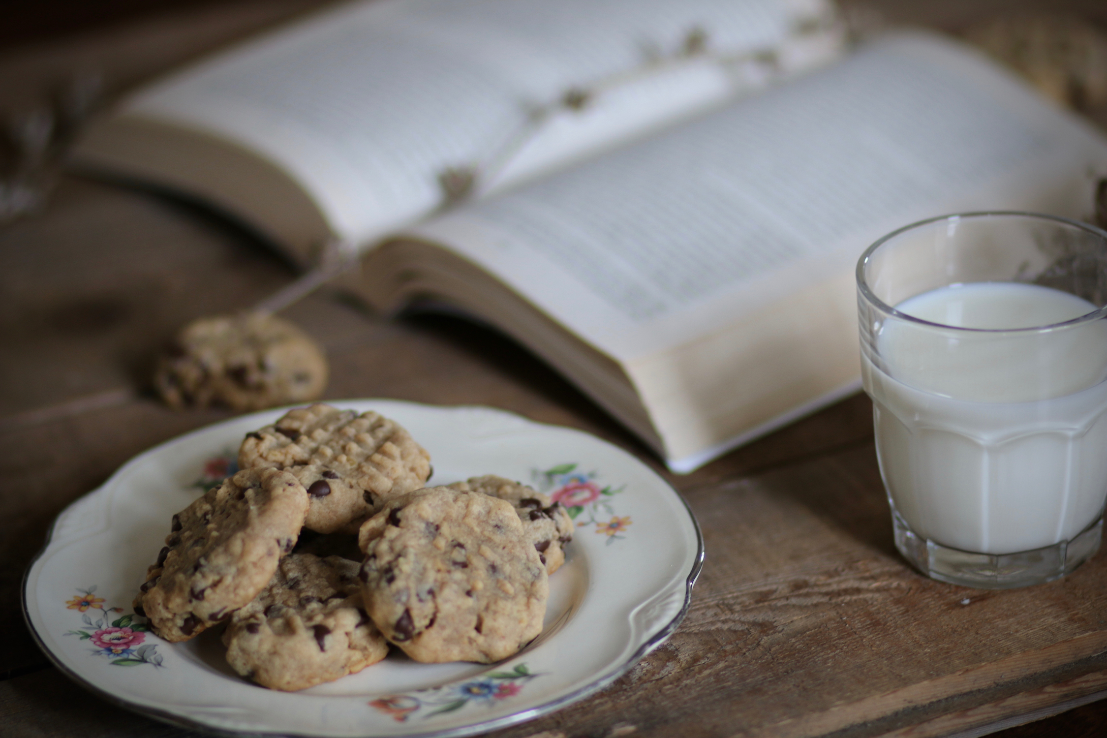 Peanut Butter Oatmeal Chocolate Cookies | Linden & Lavender