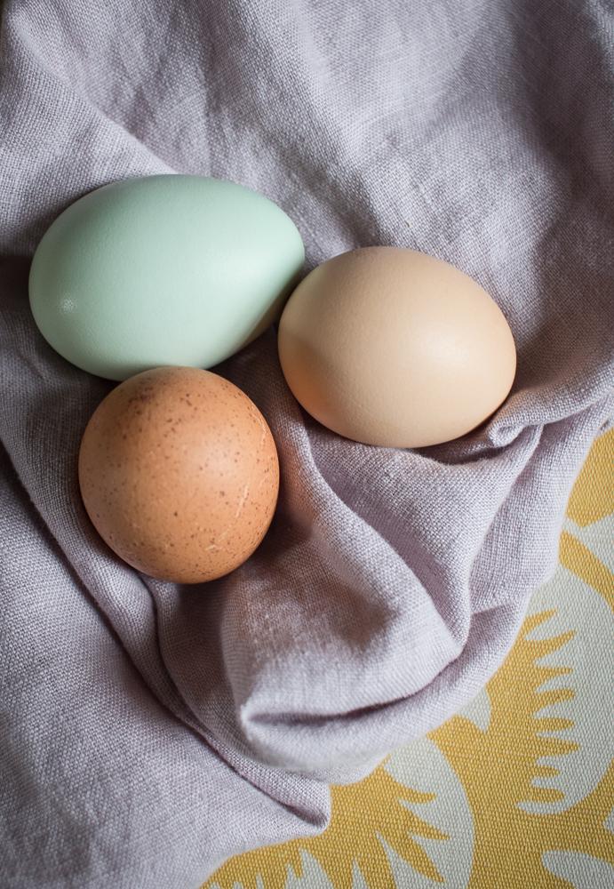 Eggs | Linden & Lavender