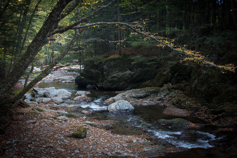Mill Trail Vermont    Linden & Lavender